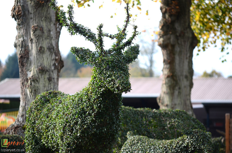 Topiary Stag at Paultons Park.